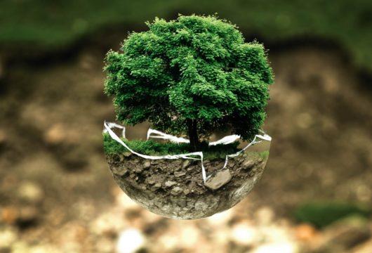Un séminaire éco-responsable
