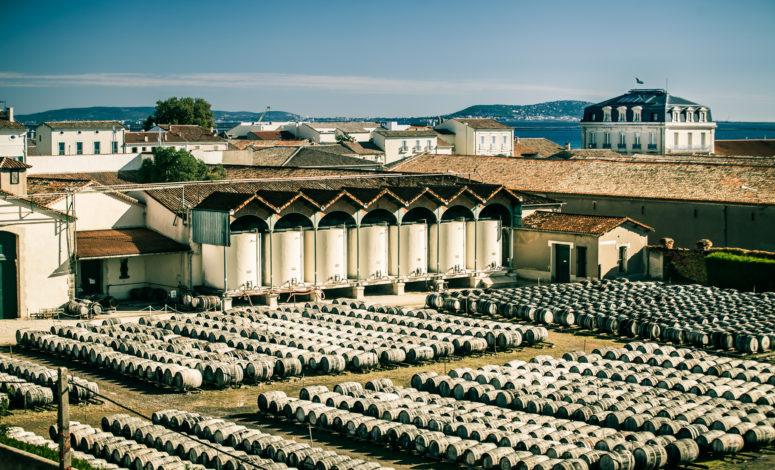 Séminaire oenologie au vert Montpellier