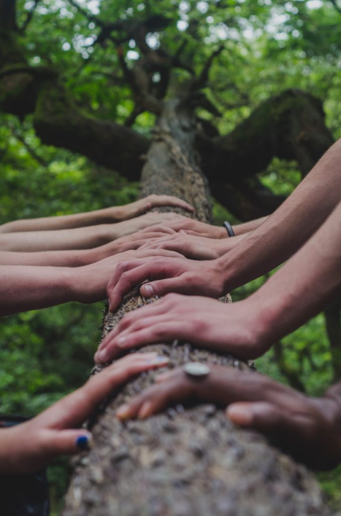 Team building nature